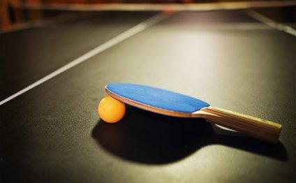 Ping Pong ~ Table Tennis