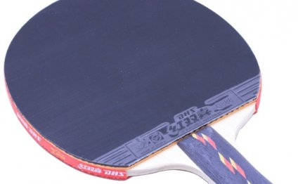 PingPong racket Double