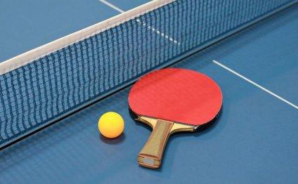Top 10 Best Table Tennis