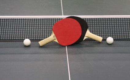Top 10 Table Tennis Bats