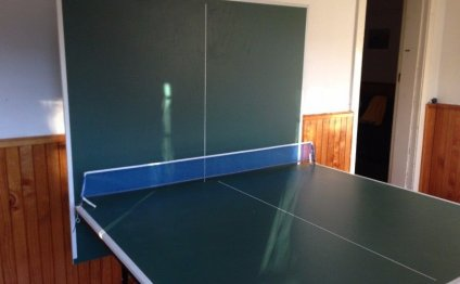 Stiga Energetic Table Tennis Bat