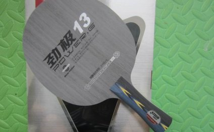 Professional Table Tennis Rackets