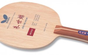 Butterfly Table Tennis Racket Price