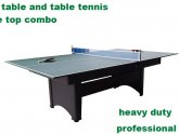 Pool and Table Tennis Combo