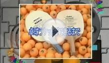 The Making of Table Tennis Bats and Rubbers Japanese YouTube